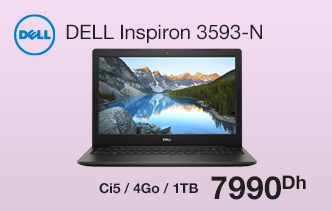 PC Portable DELL Inspiron 3593-N